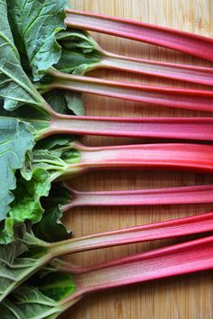 Spotlight on Rhubarb