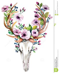 Bright Watercolor Vector Deer Skull With  Flowers - Download From Over 43 Million High Quality Stock Photos, Images, Vectors. Sign up for FREE today. Image: 56787591
