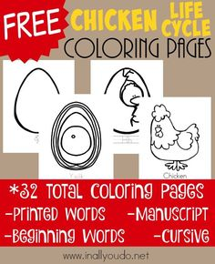 Start your Chicken unit off right with these FUN Chicken Life Cycle Coloring Pages!! 32 pages in different handwriting options! :: www.inallyoudo.net