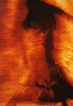 Flamenco | by Francis Giacobetti, c.1980