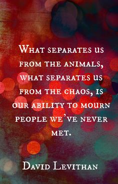 """David Levithan quotes, """"What separates us from the animals, what separates us from the chaos..."""""""