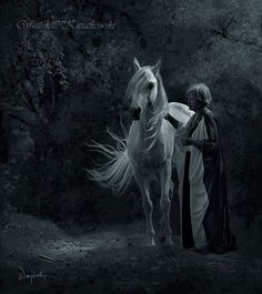 Gorgeous  Wojtek Kwiatkowski Equine Photography....I like the ethereal feel of this photo...could definitely see it working with the ideas I have.