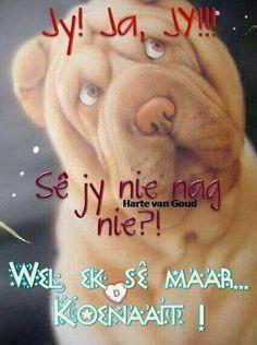 Good Night Sleep Tight, Goeie Nag, Goeie More, Angel Prayers, Afrikaans Quotes, Morning Greetings Quotes, Good Night Quotes, Wise Words, Qoutes