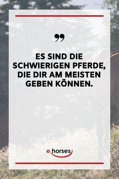 Pferdesprüche, Pferde Spruch, Pferde, Pferdeliebe Horse Quotes, My Passion, Animals And Pets, Calm, Horses, Humor, Motivation, Poster, Life
