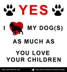 Repin and Share this picture if you love your dog(s) as much as others loves their children! - http://www.bterrier.com/love-my-dogs-as-much-as-you-love-your-children/ https://www.facebook.com/bterrierdogs