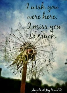 every day, i miss you so much.....