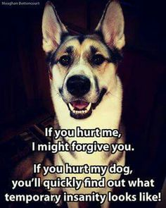 Hurt my dog, and i will make you wish you were never born...