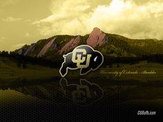 CU Buffs logo in beautiful Boulder, CO  University of Colorado