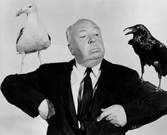 Hitchcock with a seagull and a crow. Would you rather feed the seagulls or eat crow Hitchcock?