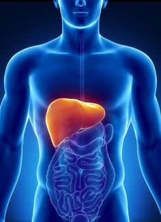 acid reflux disease facts - gerd herold innere medizin - what is ok for acid reflux - symptoms blocked ears heartburn - find acid reflux Reflux Disease, Liver Disease, Colon Cancer, Natural Treatments, Natural Remedies, Liver Detox, Cleanser, Alcohol