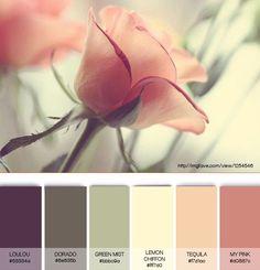 Мягкая теплая осень. Палитра. Цветовые решения. Природа.Сочетания цветов. Оттенки осени для гардероба. Красота, вдохновление природой
