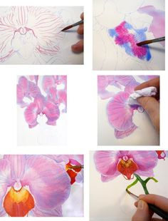 Watercolor orchid | Orchid Painting Steps