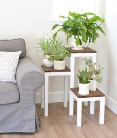 DIY Tiered Plant Stand  You know every house has an empty corner that could use some decor. Here's an idea: fill one of those corners with greenery by building a DIY tiered plant stand.