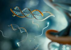 DNA programmed to detect and bind to cancerous mutations - Advances screening and therapeutics