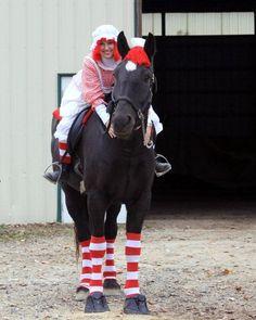 Horse halloween costume: