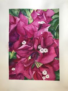 #watercolour Bougainvillea, Watercolour, Rugs, Painting, Home Decor, Art, Watercolor, Homemade Home Decor, Watercolor Painting