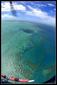 The Great Barrier Reef, Port Douglas, Queensland, Australia Copyright: Michel Detay