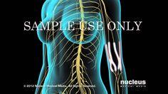 Masaje alivia fibromialgia, dolores musculares y articulares, atención a domiicilio cel 991840226