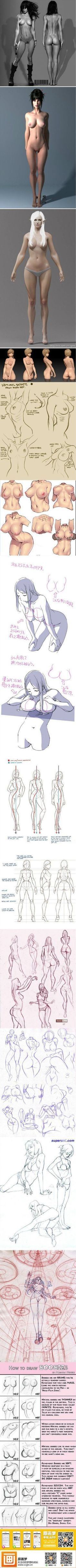 Body anatomy. How to draw female body.: