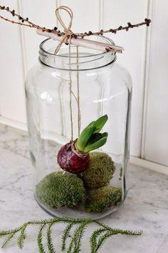 add: design / anna stenberg / lantligt på svanängen: Svävande hyacinter!
