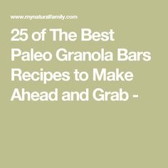 25 of The Best Paleo Granola Bars Recipes to Make Ahead and Grab -