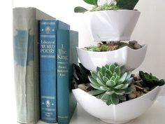 tiered planter with succulents by Lucy Ancheta-Akins of Craftberry Bush via iVillage.com