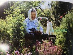 miyoko ihara misao the big mama and fukumaru the cat - Google zoeken