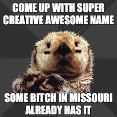 I must repost ALL of Roller Derby Otter-- Hahaha.  i'm from MO.  Can't have Cass KickHer!  Sorry :)