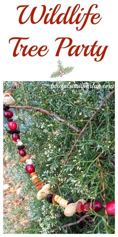Tree Party Fun winter activity with the kids. Have a party or do with just your kids on winter break.Fun winter activity with the kids. Have a party or do with just your kids on winter break.