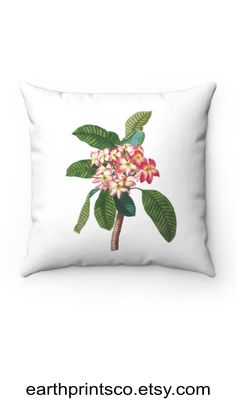 """Floral throw pillow cover / botanical throw pillowcase / Frangipani Plumeria flower cover for accent pillows ✻ Pillow cover / Pillowcase ✻ floral botanical design ✻ Frangipani / Plumeria flower prints ✻ Available 4 sizes: 14""""x14"""", 16""""x16"""", 18""""x18"""", 20""""x20"""" ✻ Pillow is not included ✻ 100% Polyester ✻ Double-sided print ✻ Concealed zipper Square Pillow Covers, Throw Pillow Covers, Pillow Cases, Floral Throw Pillows, Accent Pillows, Flower Prints, Zipper, Flowers, Design"""