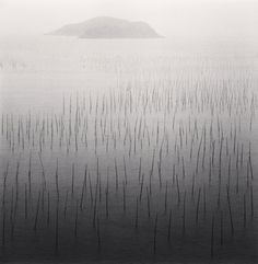 Seaweed Farms, Study 5, Xiapu, China, 2010 by Michael Kenna