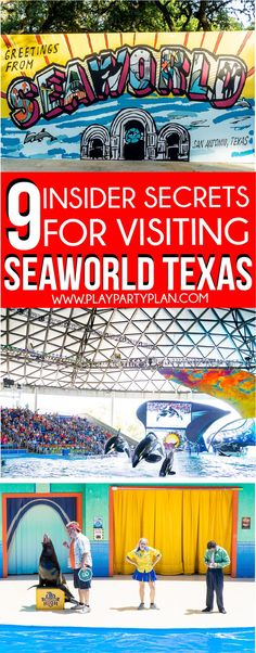 Insider tips and secrets you need to know before visiting SeaWorld Texas! Everything from what outfit will be best to hacks for getting the most food and even tips for visiting with kids. Love these ideas for must-ride rides, shows to see (the orcas!!), and even which animals you can interact with! Sponsored by SeaWorld