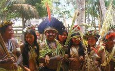 Indígenas Arara