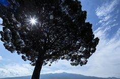 Vackra mytomspynna Sicilien - Italiens hetaste vinområde | World of Wine Clouds, Outdoor, Wine, Outdoors, Outdoor Games, The Great Outdoors, Cloud