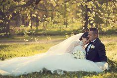 Michelle & Daniel at Weston Park Canberra Weston Park, Wedding Images, Wedding Photography, Wedding Dresses, Bride Dresses, Bridal Gowns, Wedding Dressses, Wedding Photos