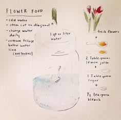 Flower food!