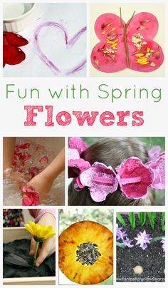 Spring Flower Activities for Kids featured at @Shaunna @ Fantastic Fun and Learning