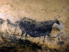 """Lascaux Steer 