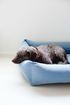 Kind for dogs Oma paikka dog bed denim ensures your dog luxurious sleeping comfort. The Nordic and clean style is inspired by nature, making Oma paikka dog bed so beautiful that it will fit right in with your interior décor. Nordic Style, Dog Accessories, Dog Bed, Your Dog, Pup, Throw Pillows, Denim, Dogs, Inspiration