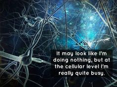 At the cellular level I'm really quite busy - LOL Quantum World, Science Jokes, Science Fun, Cellular Level, Nerd Humor, Chronic Fatigue Syndrome, Chronic Illness, Chronic Pain, Quantum Physics