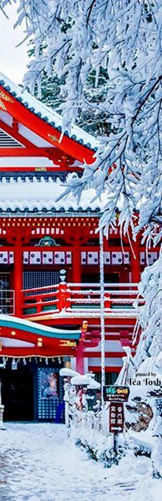 ❇Téa Tosh❇ Natadera Temple In Winter