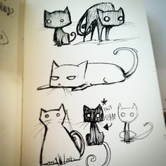 #cats #DailyDoodle