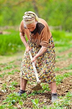 Old rural woman working the land by Catalin Petolea, via Dreamstime