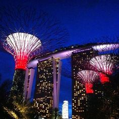 Super Trees @ Gardens by the Bay in Singapore light it up at night.Stunning!!!!!