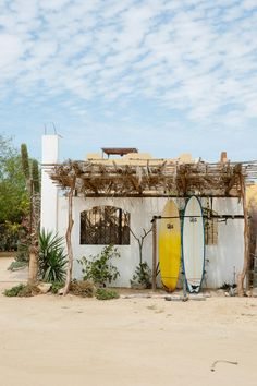 Why Your Next Group Trip Should Be to Todos Santos, Mexico Beautiful Places To Travel, Cool Places To Visit, Holiday Destinations, Travel Destinations, Group Travel, Baja California, Travel Aesthetic, Dream Vacations, Travel Photography