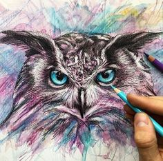 Animals Drawings and Paintings Owl. Wild Animals Drawings and Paintings. By Liam Cross. Wild Animals Drawings and Paintings. By Liam Cross. Wild Animals Drawing, Animal Drawings, Sketchbook Drawings, Art Drawings, Colored Pencil Artwork, Spirited Art, Art Plastique, Animal Paintings, Painting & Drawing