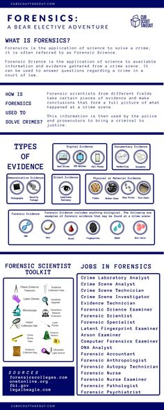 Cub Scouts - Den Leader reference guide for the Forensics Bear Elective Adventure
