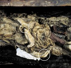 World's most ancient elaborate tattoos. Found on mummified remains of Princess Urok, entombed in Siberia. http://siberiantimes.com/culture/others/features/siberian-princess-reveals-her-2500-year-old-tattoos/