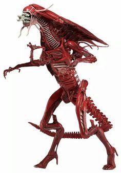 Red Queen (Aliens genocide)