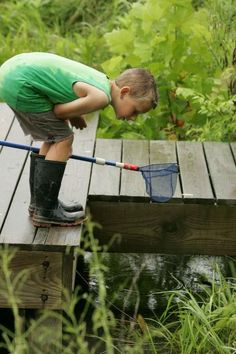 Looking for tadpoles. I did that every day it rained on the way home from school